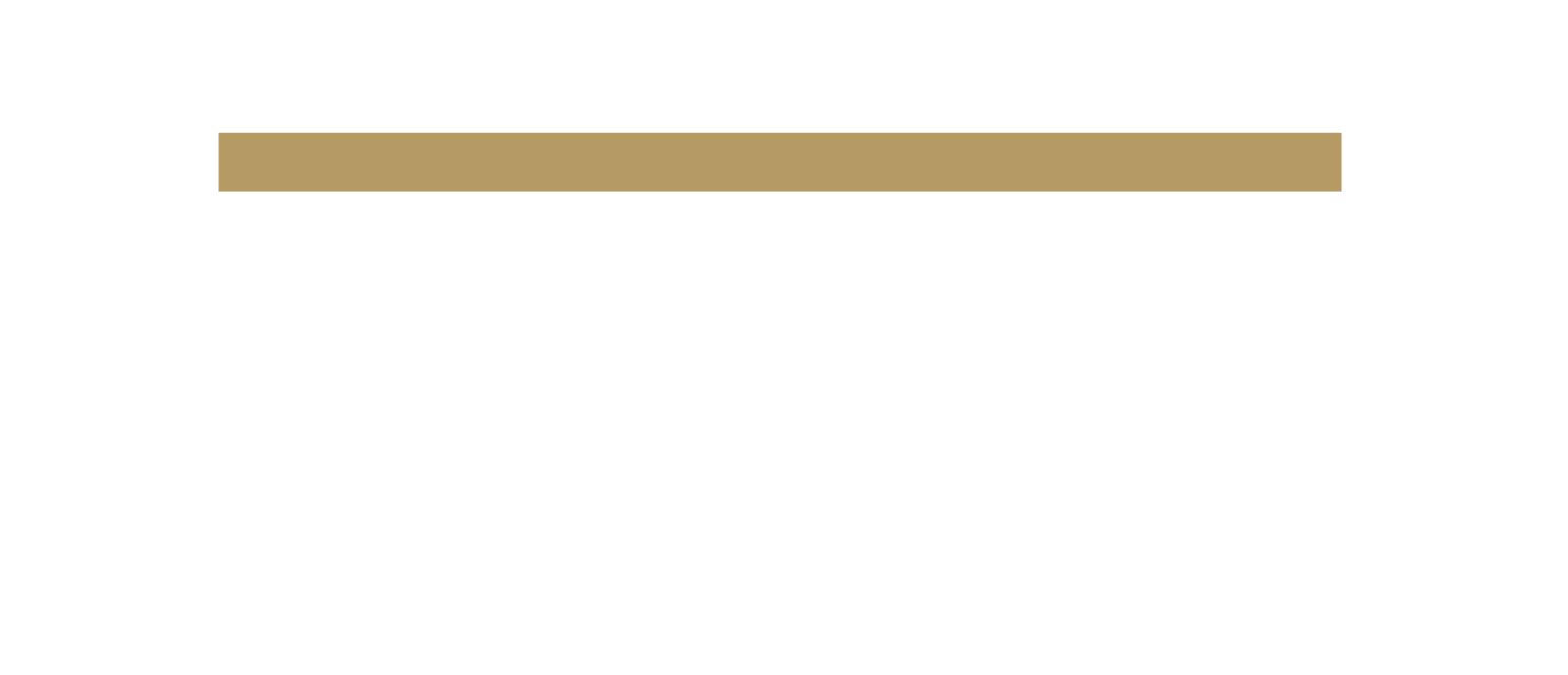 Stewards Capital Group Logo